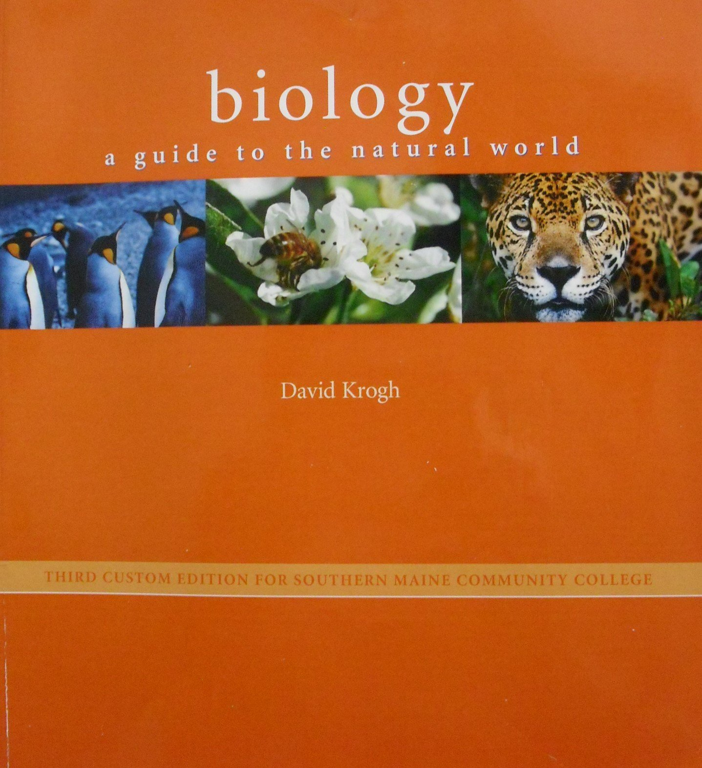 Read Online BIOLOGY:GUIDE TO NATURAL WORLD>CUSTOM< PDF