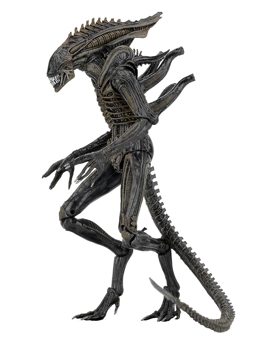 "NECA Aliens - 7"" scale action figure series 11 - Defiance Alien"
