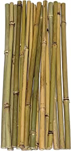 """Dlh Western Natural Bamboo Poles 1.33ft Long, Average Diameter of 1/2"""" (18-Count)"""