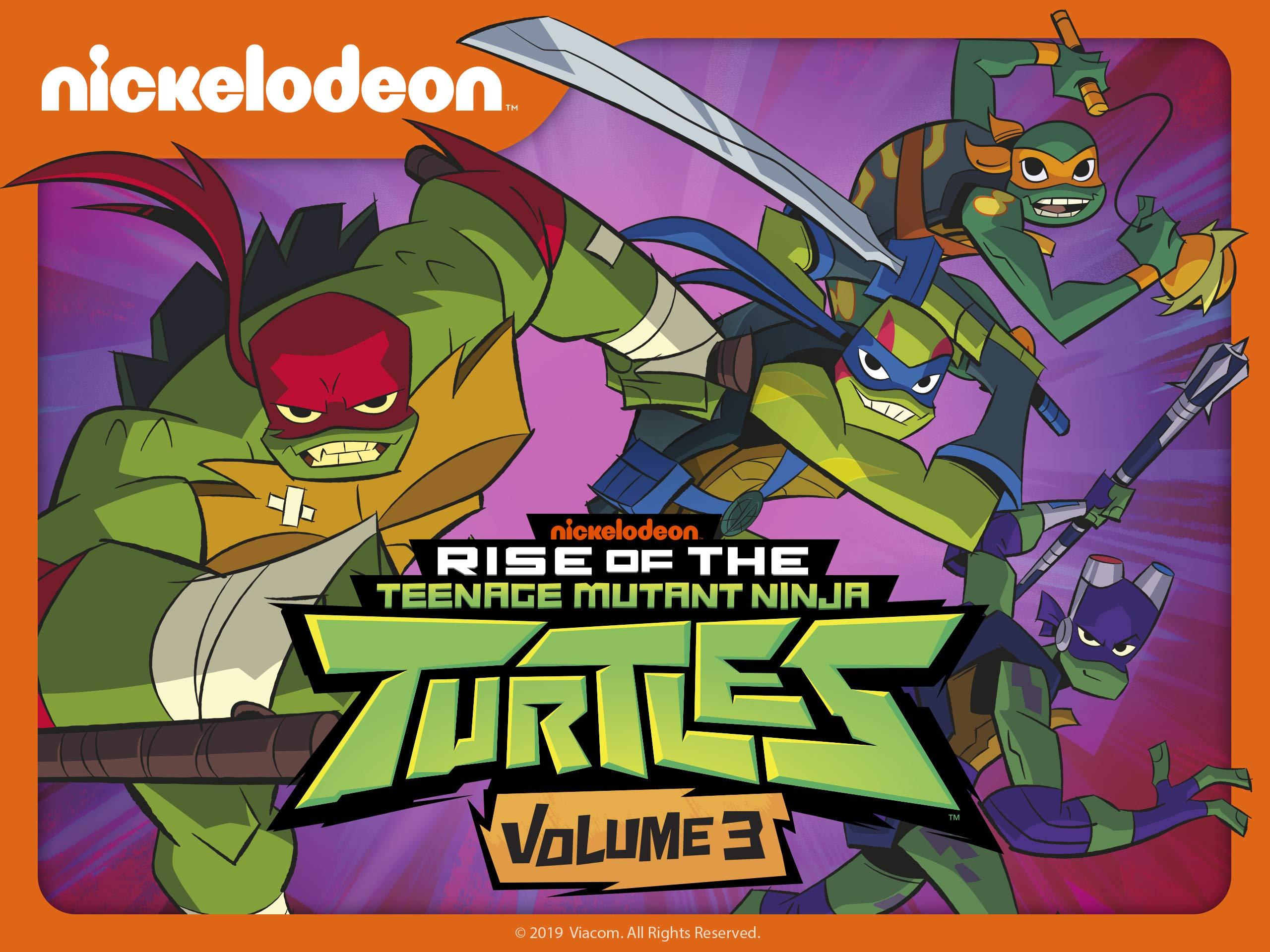 Watch Rise of the Teenage Mutant Ninja Turtles Season 3 ...