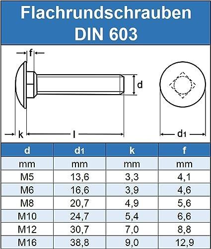 - Schlossschrauben DIN 603 Vollgewinde Flachrundschrauben mit Vierkantansatz M6 x 16 mm Edelstahl A2 50 St/ück Gewindeschrauben Eisenwaren2000 ISO 8677 Flachrundkopf Schrauben rostfrei