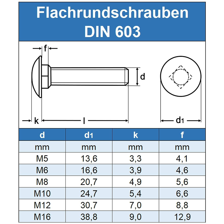 50 St/ück Vollgewinde - Schlossschrauben DIN 603 Gewindeschrauben Edelstahl A2 Eisenwaren2000 ISO 8677 Flachrundkopf Schrauben Flachrundschrauben mit Vierkantansatz M5 x 50 mm rostfrei