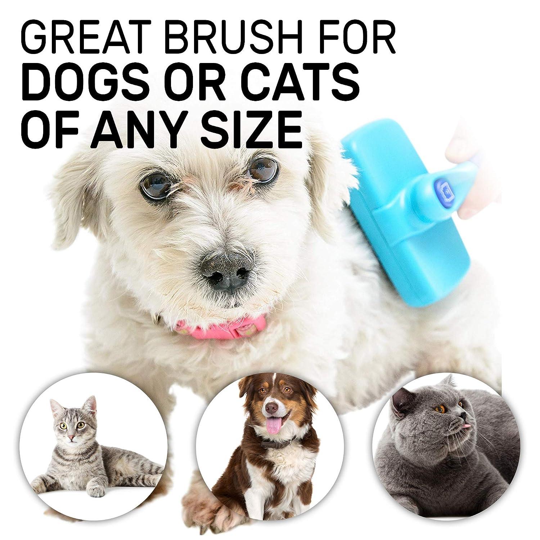 Amazon.com: Cepillo de pelo para perro y gato de CleanHouse ...