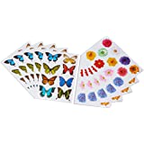Amazon stickety doo da boomerang bear variety pack stickers 10 american greetings butterflies and flowers sticker sheets 10 piece m4hsunfo