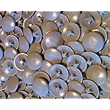 Stabdeckschraube+Torxantrieb,Flach-SEK VPE 15 ARBO-INOX
