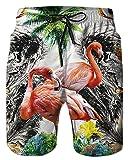 Alistyle Mens Swim Shorts Fashion Flamingo Print