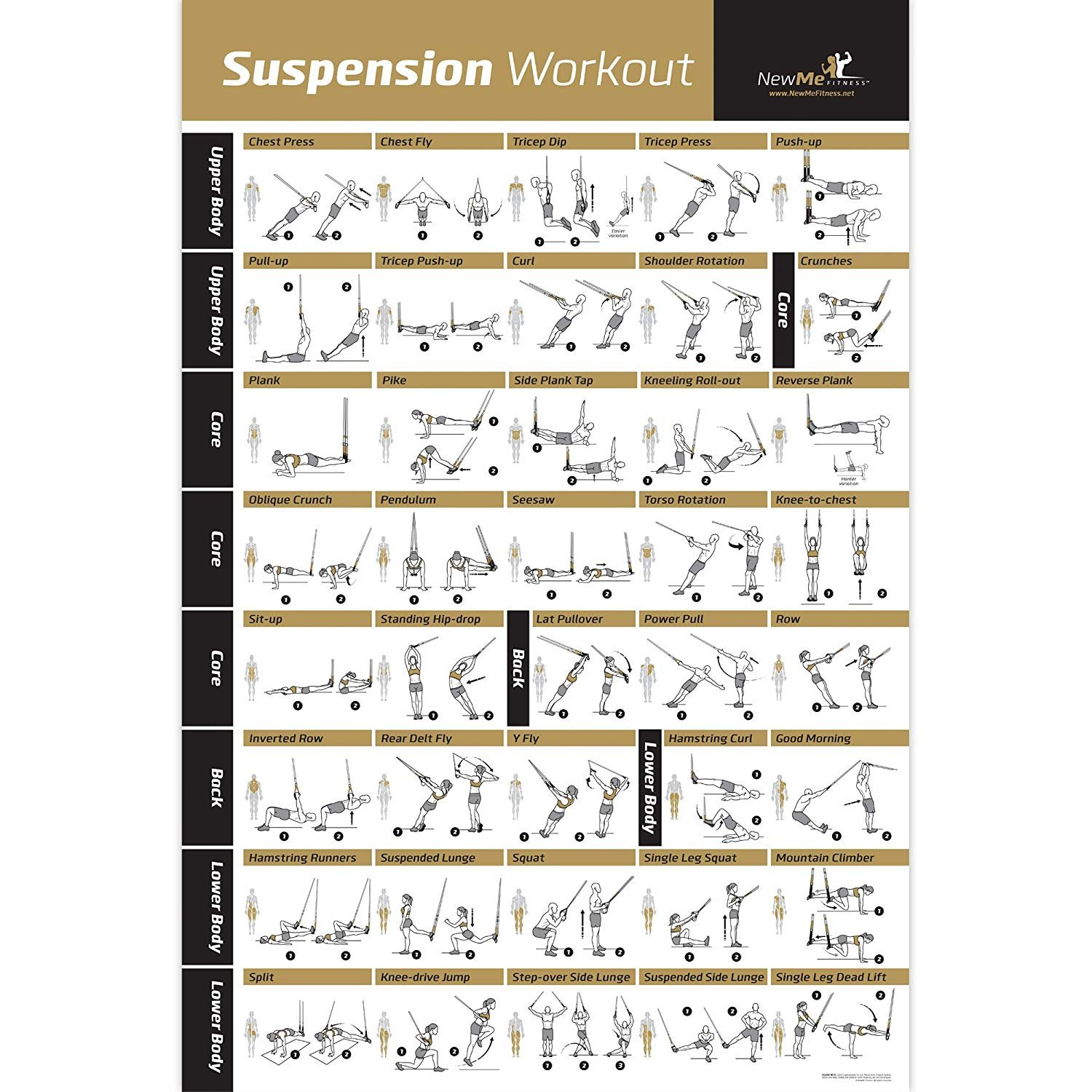 photograph relating to Trx Workout Plan Printable called Suspension Fitness Poster Laminated - Electrical power Exercising Chart - Establish Muscle mass, Tone Tighten - Dwelling Health club Resistance Exercise routine Timetable - Exercise Advisor -