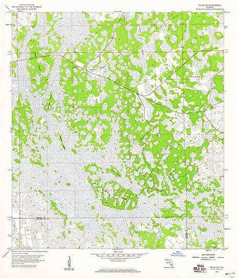 Amazon.com : YellowMaps Felda SE FL topo map, 1:24000 Scale ...