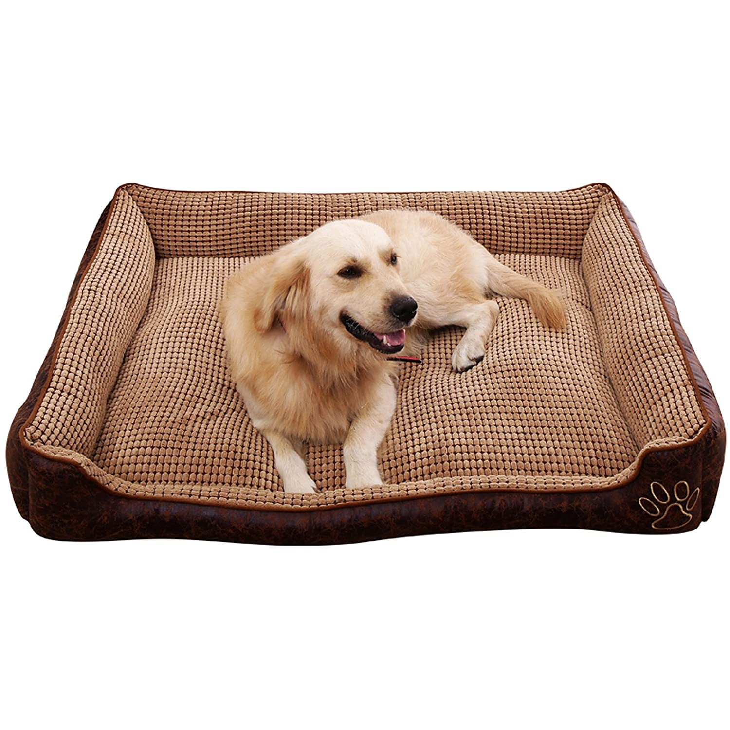 big solid premium first ultimate from orthopedic company quality petfusion with edition large better memory pets beds foam review bed dog world