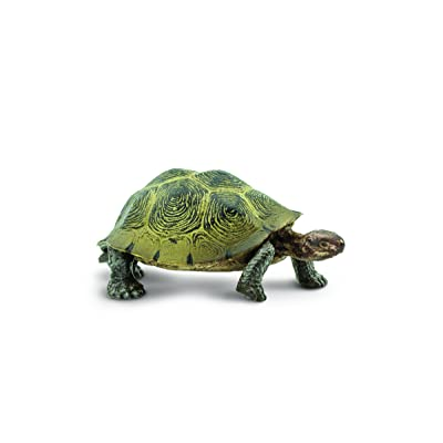 Safari Ltd Wild Safari North American Wildlife – Desert Tortoise – Realistic Hand Painted Toy Figurine Model – Quality Construction From Safe and BPA Free Materials – For Ages 3 and Up: Toys & Games