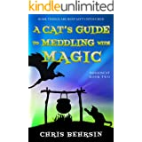 A Cat's Guide to Meddling with Magic: A Humorous Fantasy Adventure (Dragoncat Book 2)
