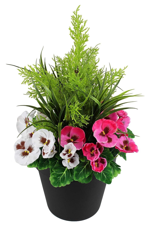 verdebrokers Limited Fioriera Artificiale (60 cm) con Viole rosa e Bianche e conifero Cedro Arte topiaria in Vaso Nero