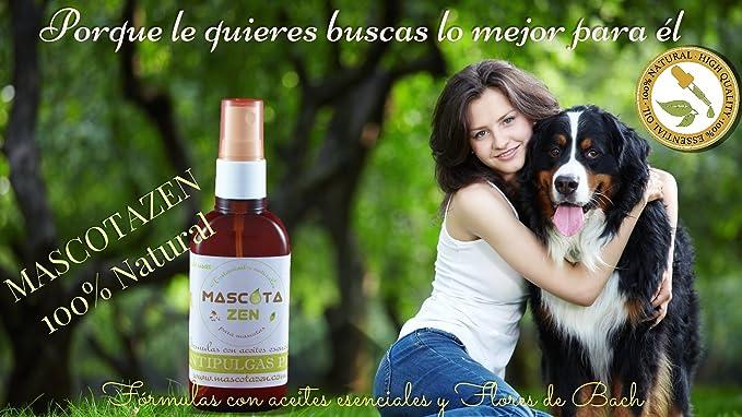Remedio Ansep Perros (Flores de Bach) 30 ml