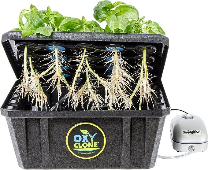 plant-cloning-machine