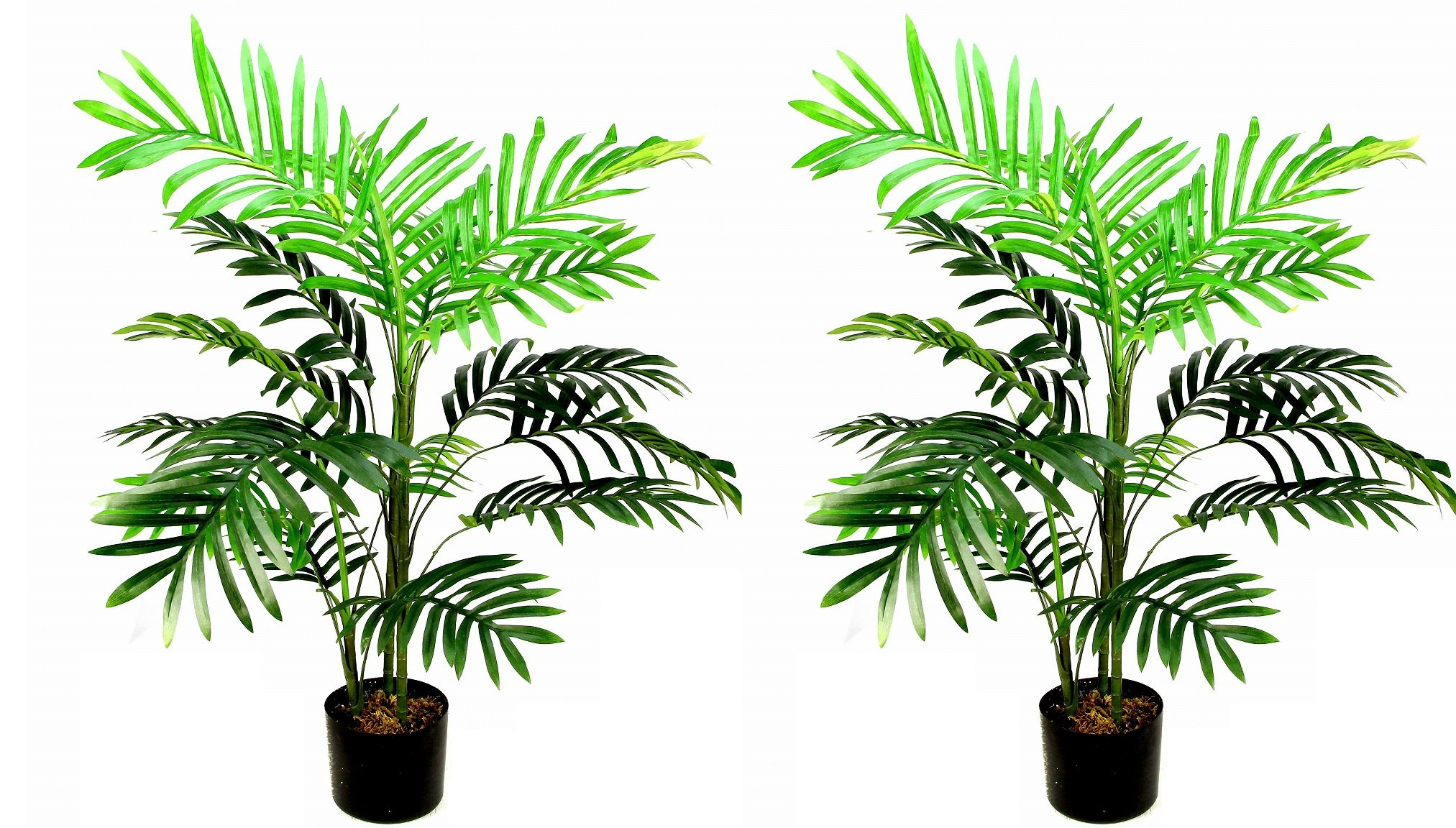Admired By Nature Plastic Pot 3 Feet Artificial Paradise Palm Tree Plant, Twin Pack