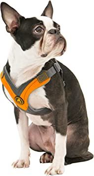 Gooby Trekking Harness Small Dog Fleece Lined Harness   Amazon