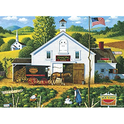 Buffalo Games - Charles Wysocki - Catchin' Bugs - 1000 Piece Jigsaw Puzzle: Toys & Games
