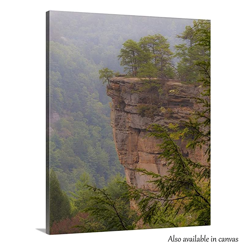 Eastern Kentucky Natural Bridge Arch in Red River Gorge NaturePhoto Art Print for HomeOfficeHospitalDining RoomDecor Forest
