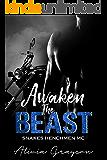 Awaken The Beast (Snakes Henchmen MC Book 10)
