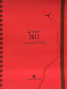 CA CoachingAgenda, ALIGAE 2017 Agenda anual, Castellano, Cubiertas color fresa.