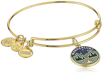 Alex and Ani Words are Powerful Bangle Bracelet ptL93Q