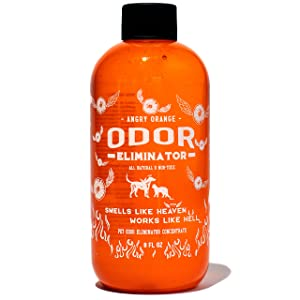 Angry Orange Pet Odor Eliminator | Dog and Cat Odor Remover | Makes 1 Gallon of Urine Remover Spray | Offsets Pet Stains for Cleaner Floors & Carpets | 8 Oz. Bottle of Stain Odor Eraser Concentrate