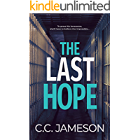 The Last Hope (Kate Murphy Mystery Book 2)