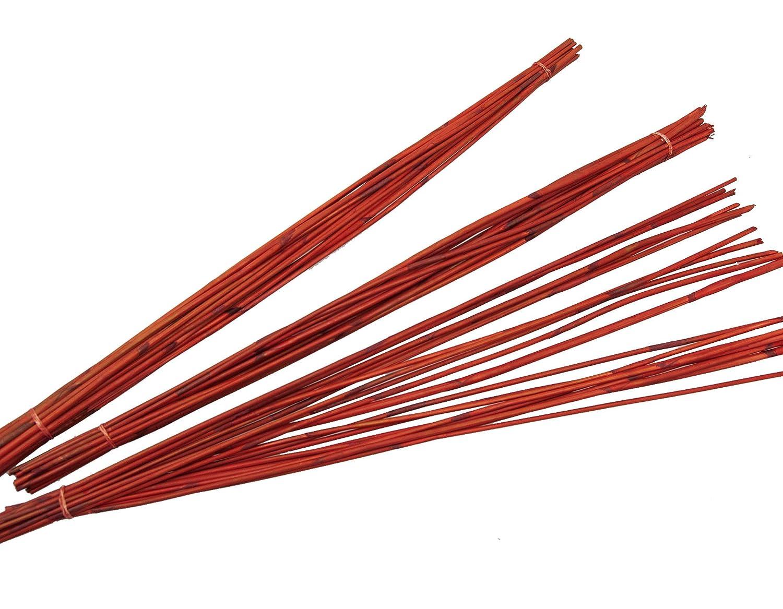 Steingaesser Reed 01139 03 1000 barre, circa 90 cm, vita a 60 pezzi, arancione circa 90cm vita a 60pezzi 01139 03 1000