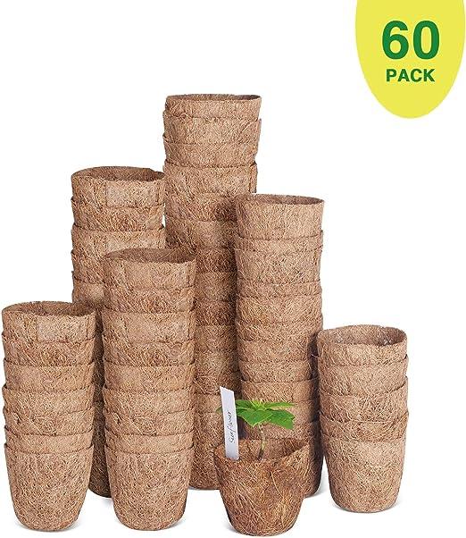Paquete de 60 macetas de semillas de coco de 3 pulgadas, macetas ...