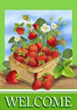 Welcome Strawberry Basket Garden Flag Springtime Red