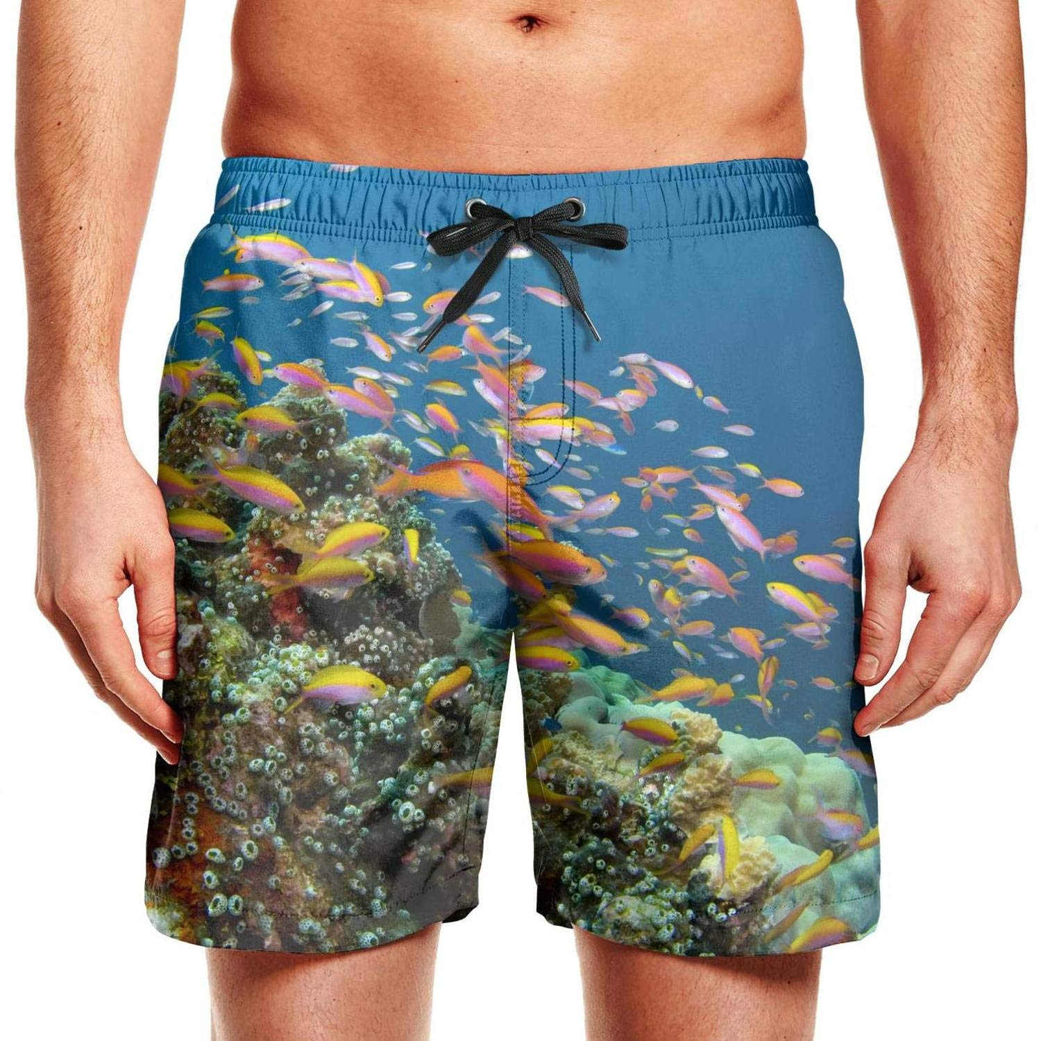 Mens Guys Fish Coral Reef Hawaii Adjustable Waistline Skate Trunks High Waisted Jogging Shorts