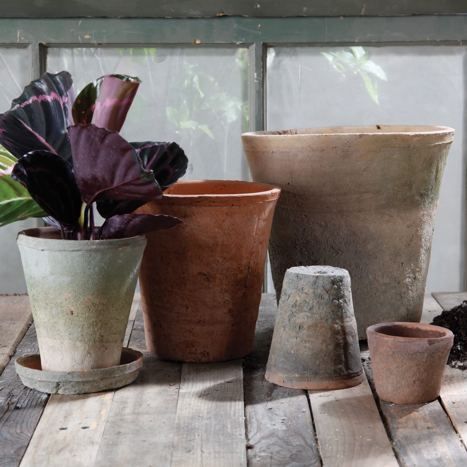 Rustic terracotta pots - come discover Hello Lovely Amazon Finds You'll Love! #agedpots #frenchcountry #homedecor #oldworldstyle #frenchfarmhouse