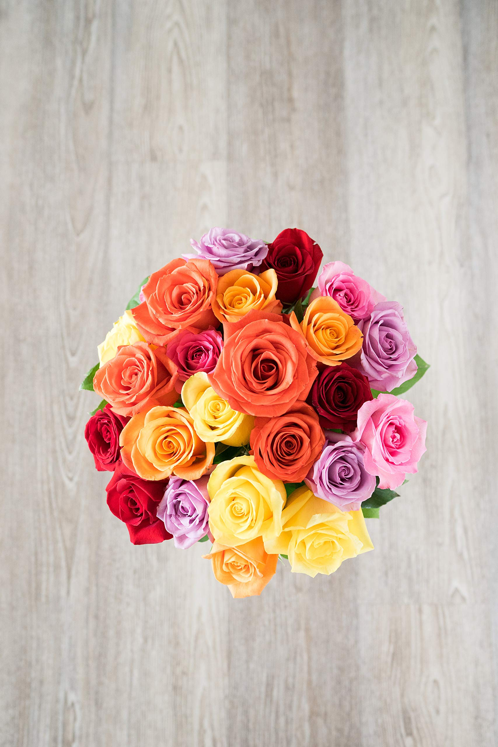 Flowers - Two Dozen Rainbow Roses (Free Vase Included) by From You Flowers