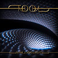 Deals on Fear Inoculum Audio CD Limited Edition