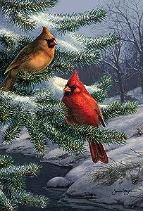 Toland Home Garden Two Cardinals 28 x 40 Inch Decorative Winter Snow Bird House Flag (1010432)