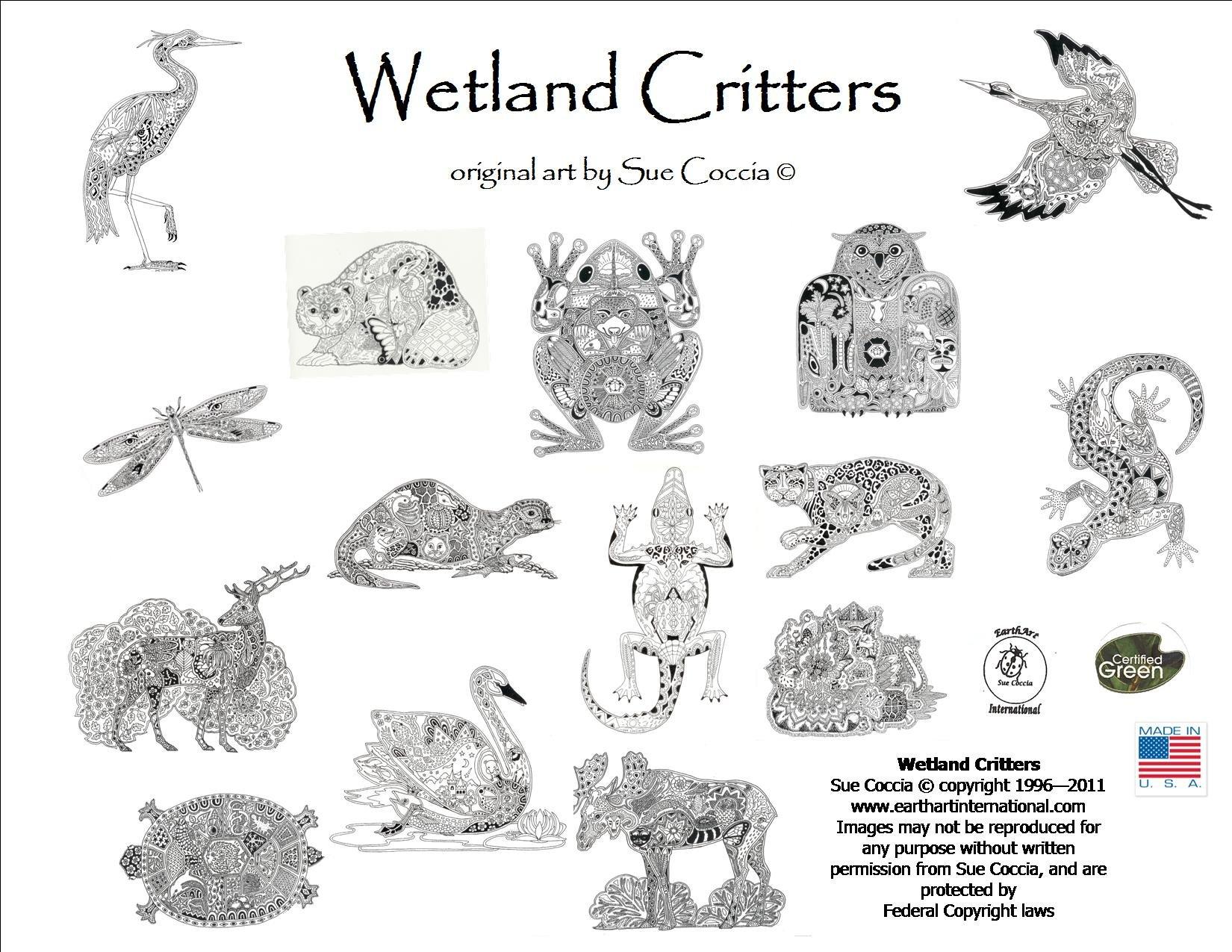 Wetland Critters Coloring Book Sue Coccia Amazon Books