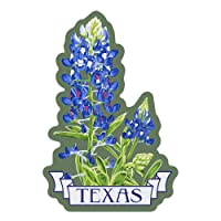 Texas, Bluebonnet, Letterpress, Contour 96330 (Vinyl Die-Cut Sticker, Indoor/Outdoor, Large)