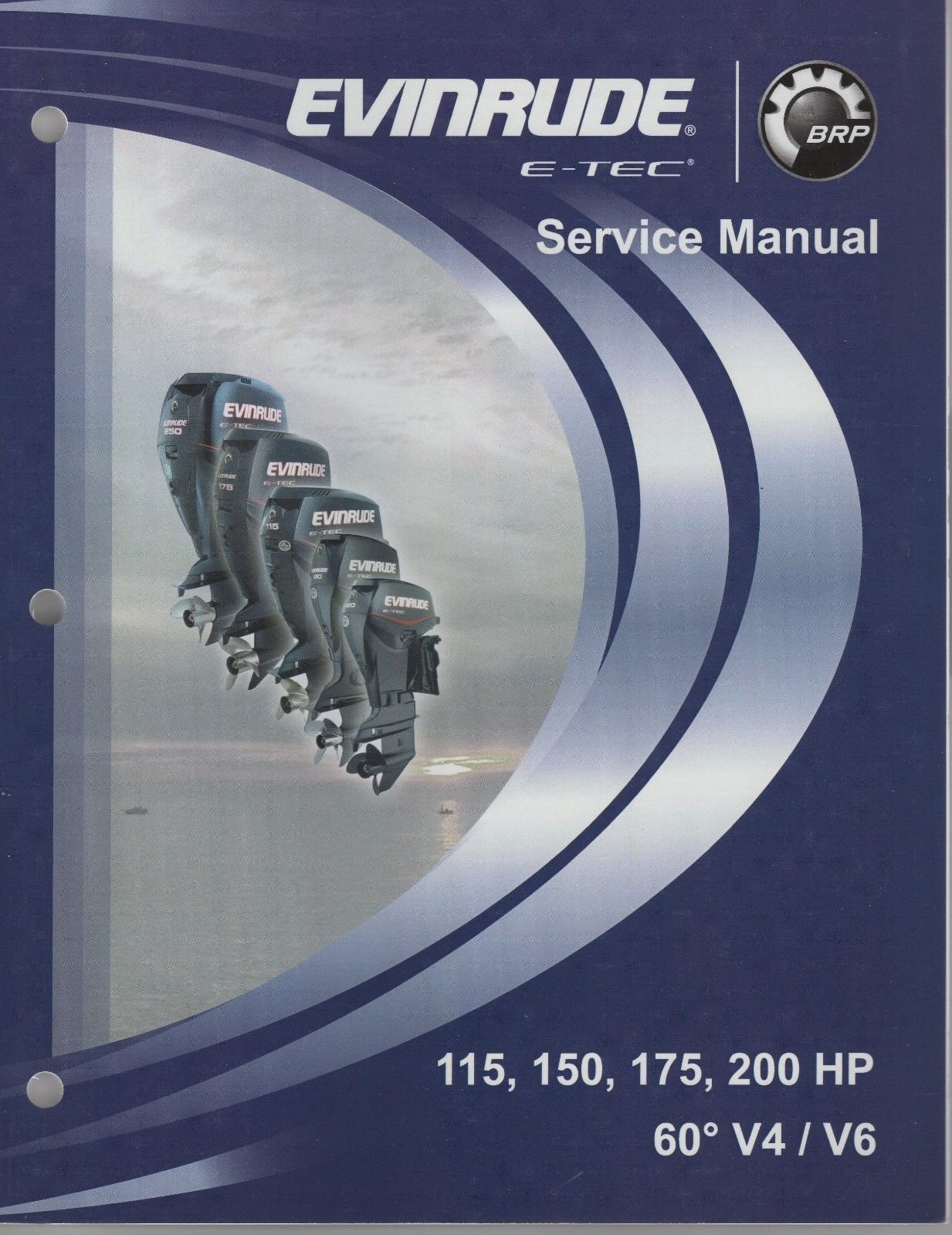 2008 EVINRUDE E-TEC OUTBOARD 115, 150, 175, 200 HP 60' V4/V6 SERVICE MANUAL  (245): EVINRUDE: Amazon.com: Books