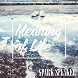 Meaning of Life※初回限定盤(CD+DVD)