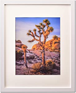 """White 20""""x24"""" Photo Frame matted to 16""""x20"""" Photos, picture frame 20x24"""