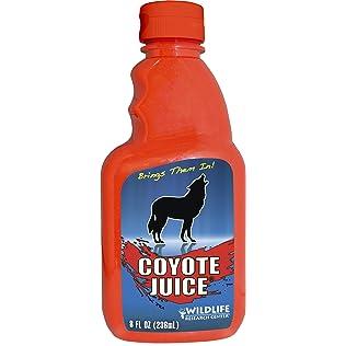 Wildlife Research 526 Coyote Juice Calling Scent
