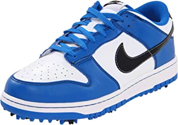 new product e9f30 7f44f Image Unavailable. Image not available for. Colour  Nike Dunk NG Mens Golf  Shoes ...