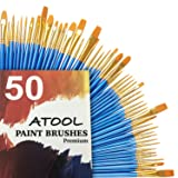 Acrylic Paint Brush Set, 5 Packs / 50 pcs Nylon Hair Brushes for All Purpose Oil Watercolor Painting Artist Professional Kits (Tamaño: Size 2/0)