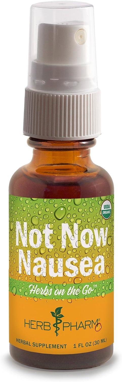 Herb Pharm Herbs on The Go Portable Spray: Not Now Nausea, 1 Ounce