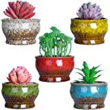 4.3 Inch Ceramic Succulent Planter Cactus Pots with Drainage Modern Small Glazed Flower Plants Containers Tiny Pots…