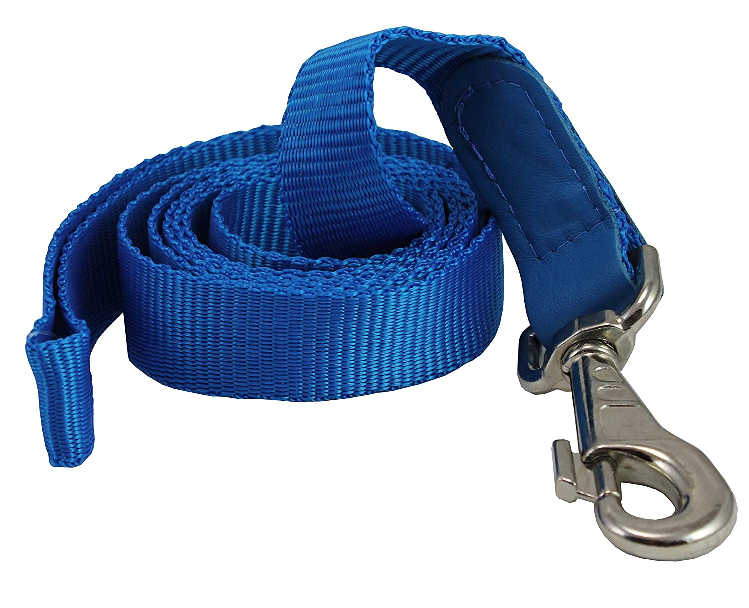 Dog Leash 1  Wide Nylon 5ft Length with Leather Enforced Snap bluee Large