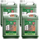 MISTRAL 4x5L Lancelot Green Cleaner for Driveways, Roofs, Walls, Decking, Patios and more - Concentrated Cleaner. Black Mould, Lichen and Algae Killer. Removes Moss.