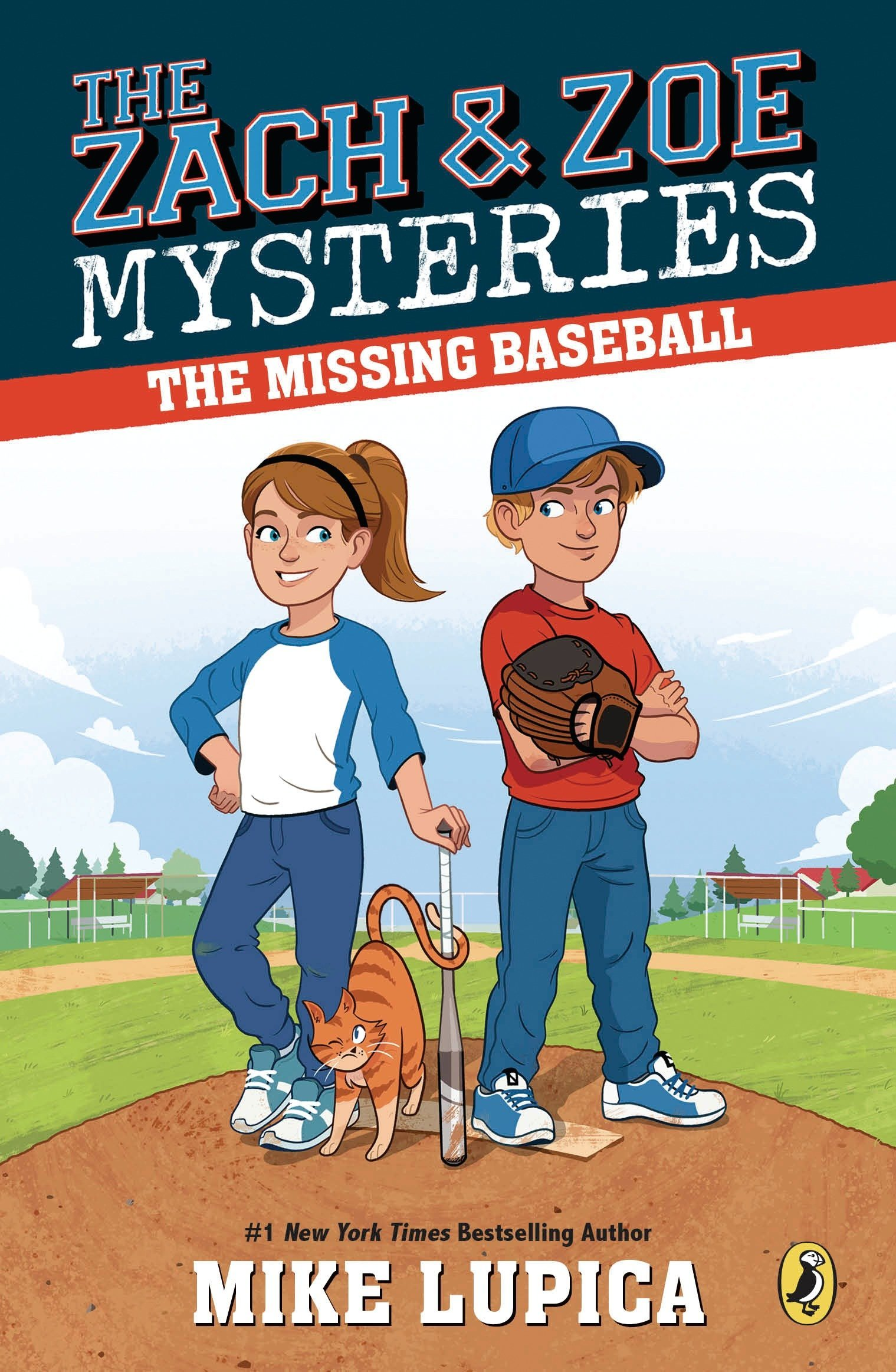 Image result for missing baseball  mystery amazon