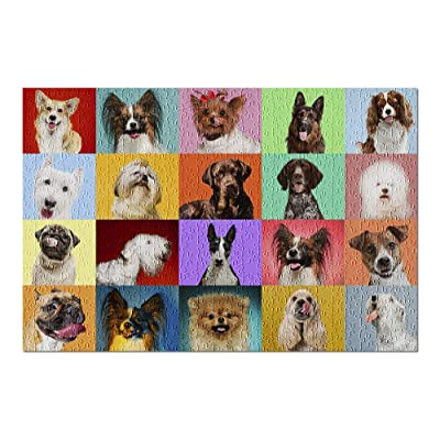 Set of Many Dogs Posing on Colorful Backgrounds 9019193 (Premium 500 Piece Jigsaw Puzzle for Adults, 13x19, Made in USA!): Toys & Games