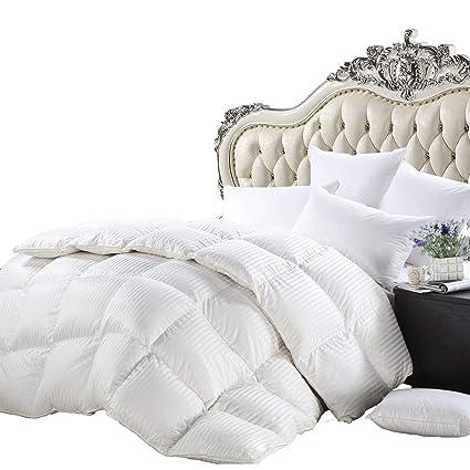 0b9dc6e6ca Luxurious Heavy Queen Size Siberian Goose Down Comforter All-Season Duvet  Insert, Premium Baffle